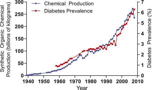 Diabetes y carga tóxica