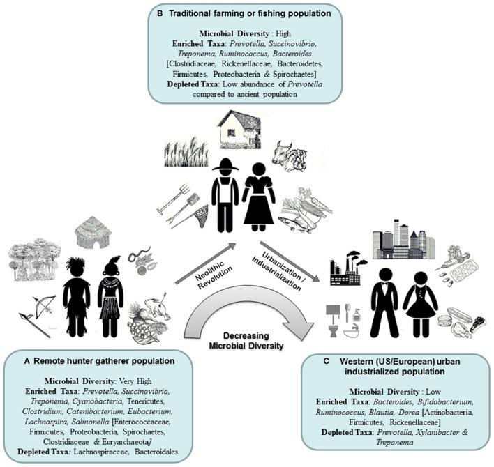Microbiota, forma de vida