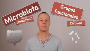 Microbiota y grupos funcionales